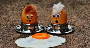 Proteine in Polvere: Effetti Collaterali?