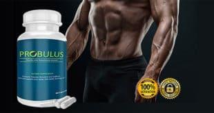Probulus Funziona? Integratore Per Aumentare La Massa Muscolare