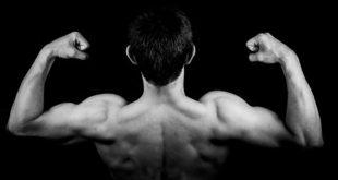 body building per dimagrire funziona