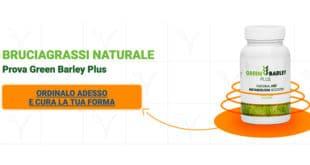 Green Barley Plus: Brucia Grassi con Garcinia Cambogia ed Erba d'Orzo