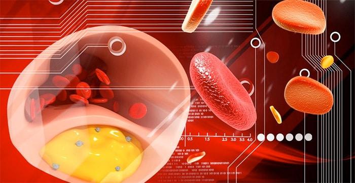 Dieta Settimanale Per Colesterolo : Dieta settimanale per ipertrigliceridemia metodi per dimagrire