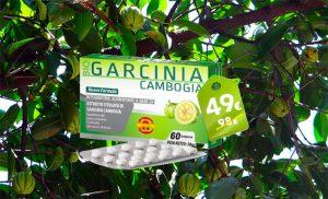 Garcinia Cambogia Bioness: L'Integratore Che Aiuta a Dimagrire? 1