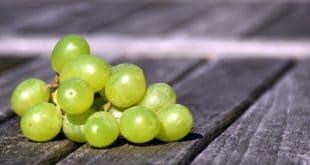 Quante calorie ha l'uva?