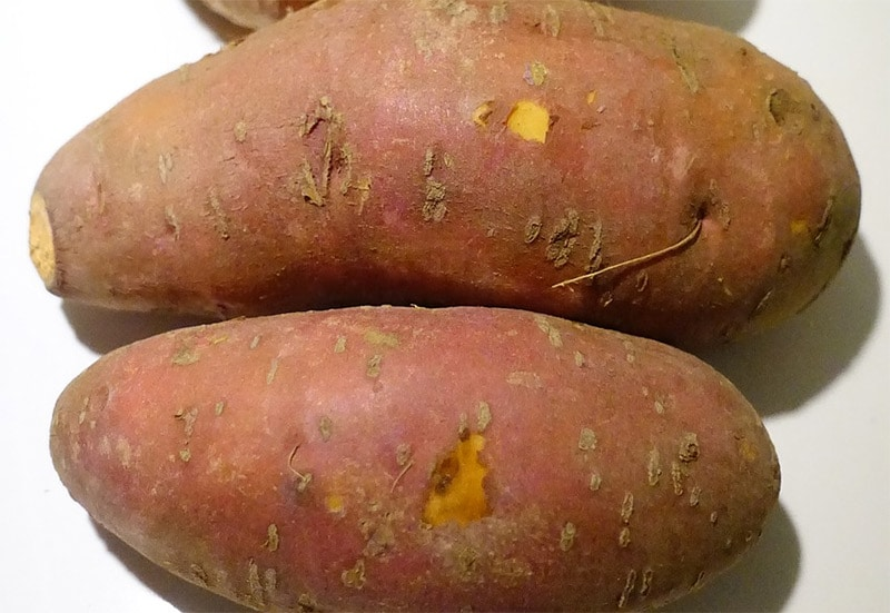 Patate Dolci Calorie