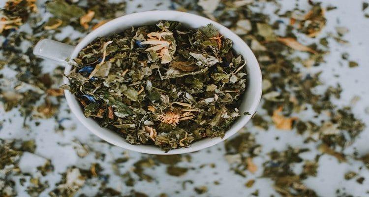 come bere il tè al coriandolo per perdere peso