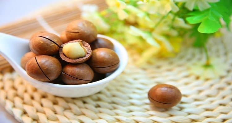 noce di macadamia per dimagrire