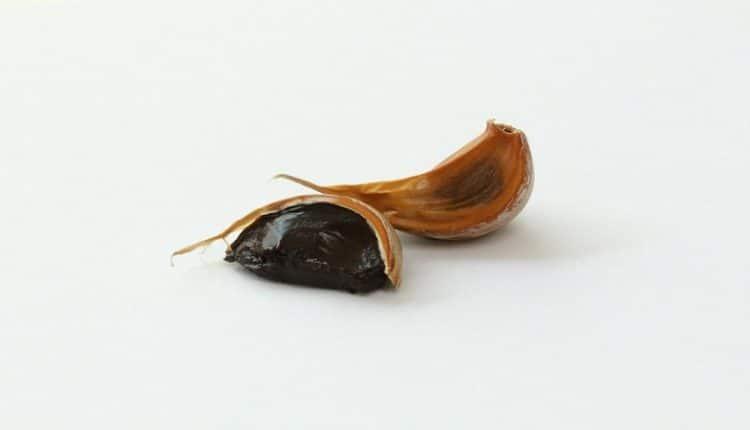 [Domande & Curiosità] Posso produrre l'aglio nero ...